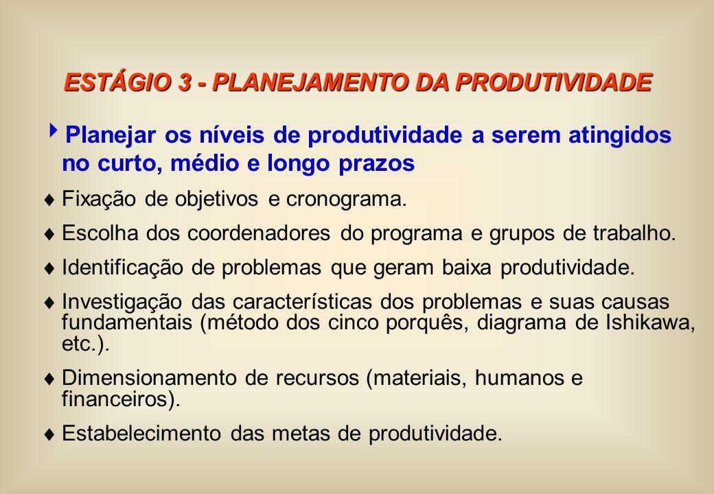 ESTÁGIO 3 - PLANEJAMENTO DA PRODUTIVIDADE