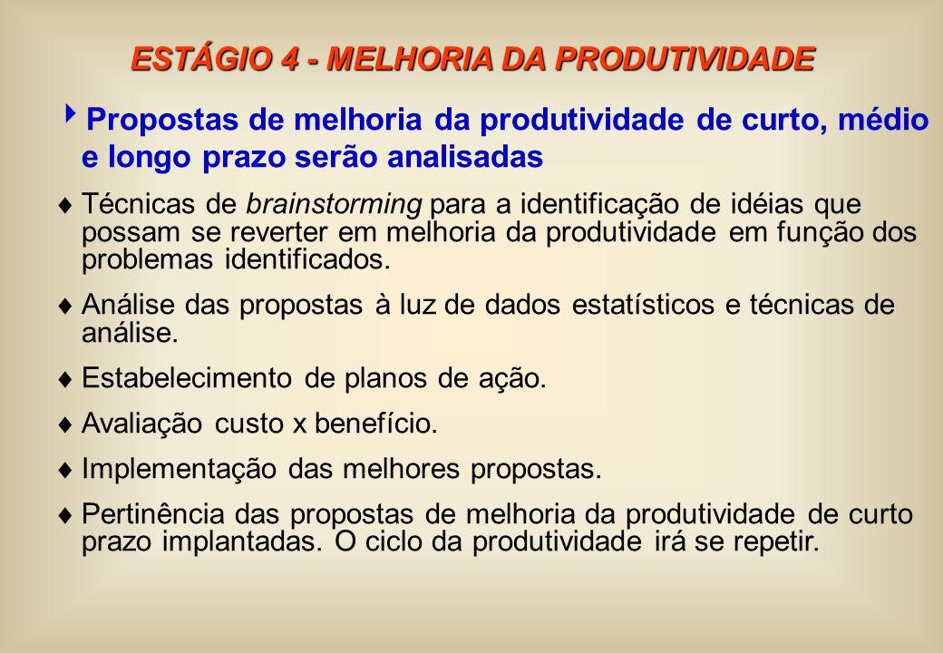 ESTÁGIO 4 - MELHORIA DA PRODUTIVIDADE