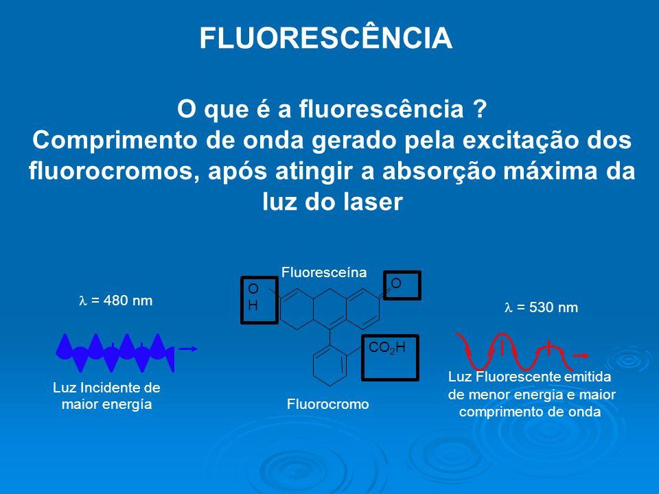 FLUORESCÊNCIA O que é a fluorescência