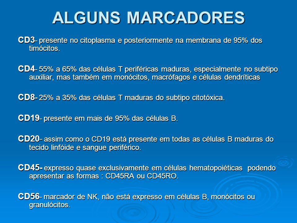 ALGUNS MARCADORES CD3- presente no citoplasma e posteriormente na membrana de 95% dos timócitos.