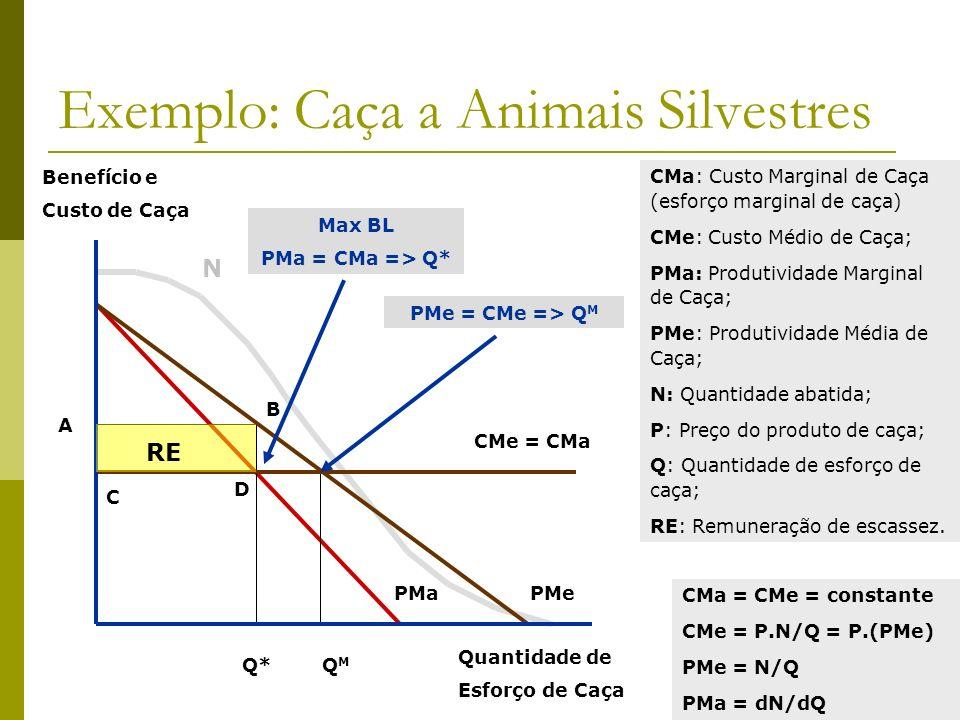 Exemplo: Caça a Animais Silvestres