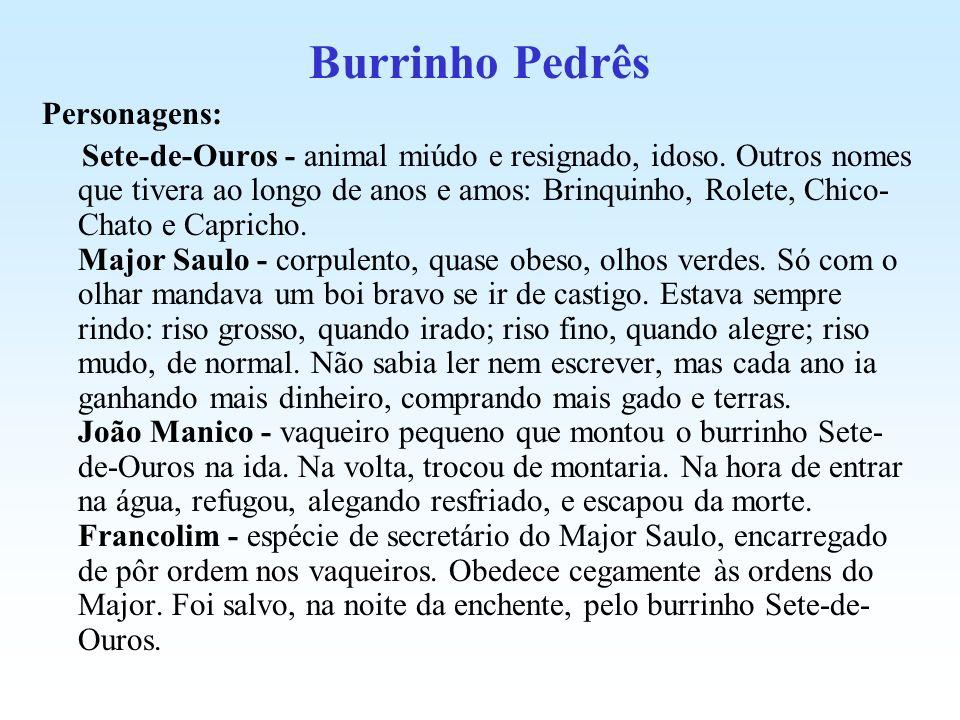 Burrinho Pedrês Personagens: