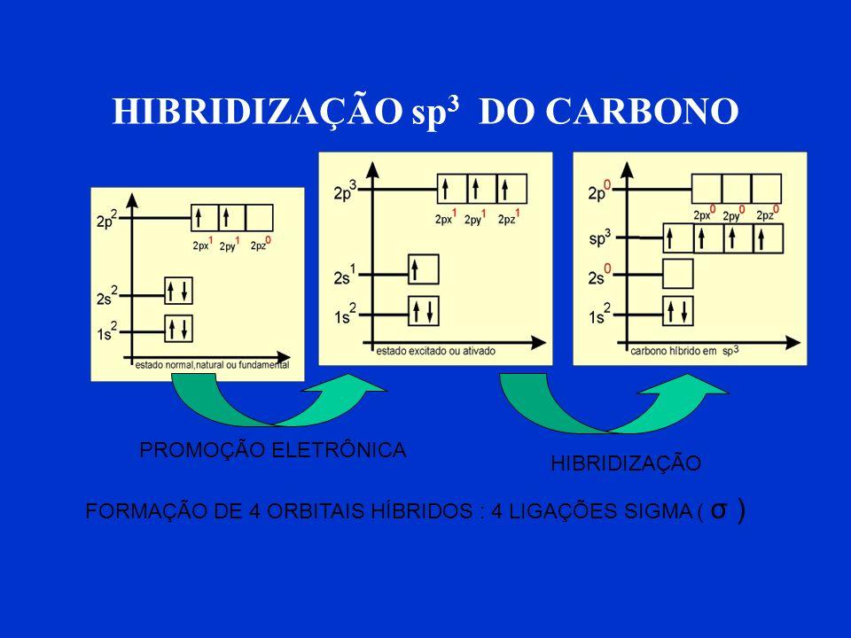HIBRIDIZAÇÃO sp3 DO CARBONO