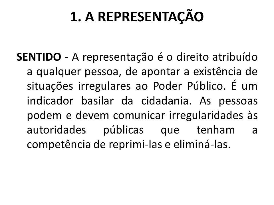 1. A REPRESENTAÇÃO