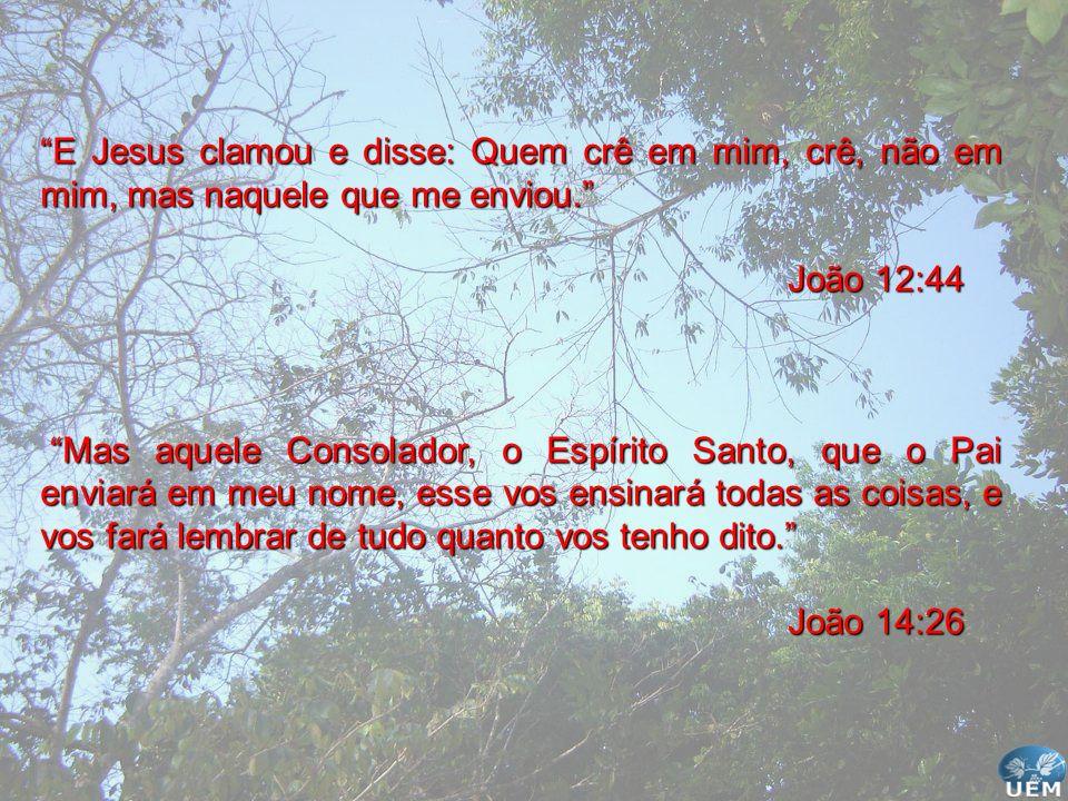 E Jesus clamou e disse: Quem crê em mim, crê, não em mim, mas naquele que me enviou.