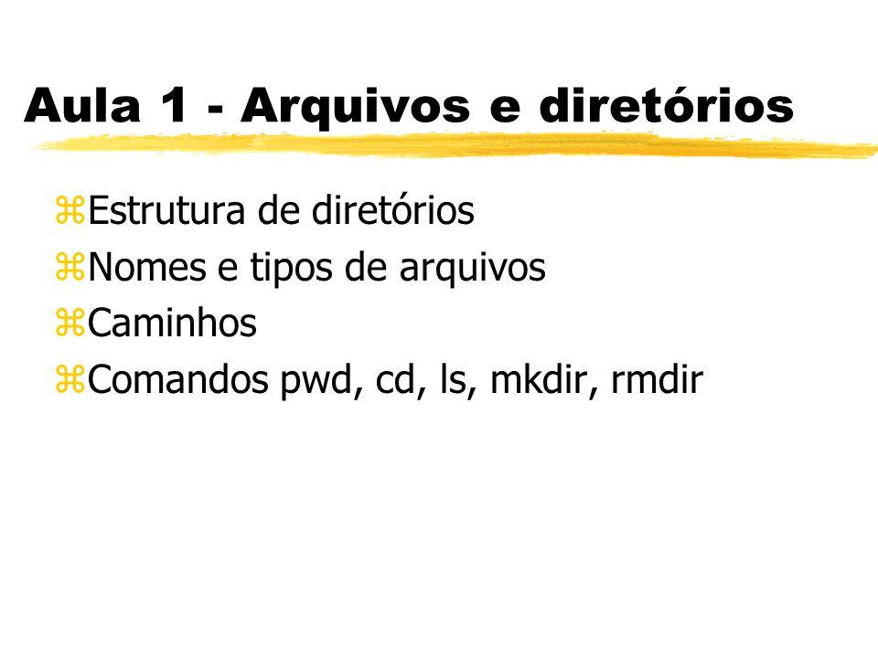Aula 1 - Arquivos e diretórios