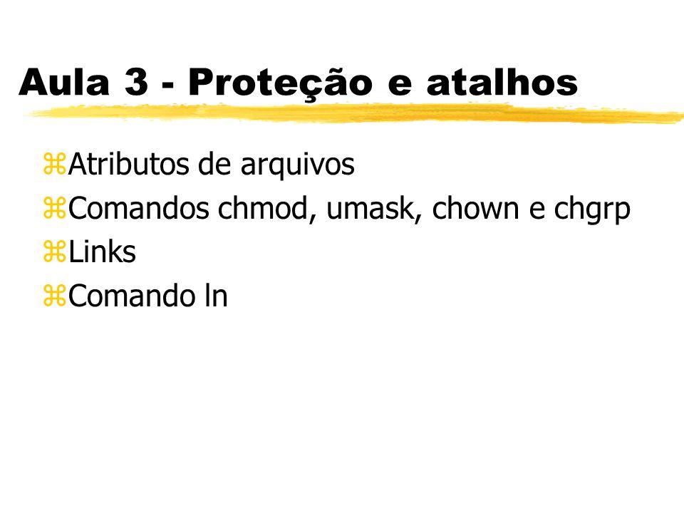 Aula 3 - Proteção e atalhos