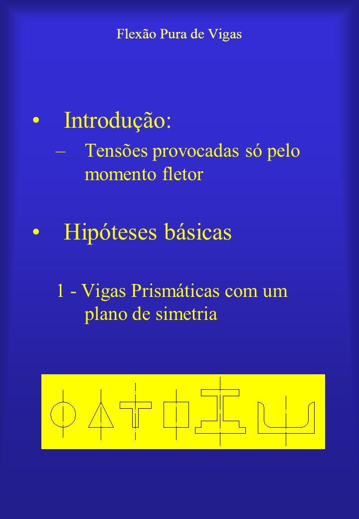Introdução: Hipóteses básicas