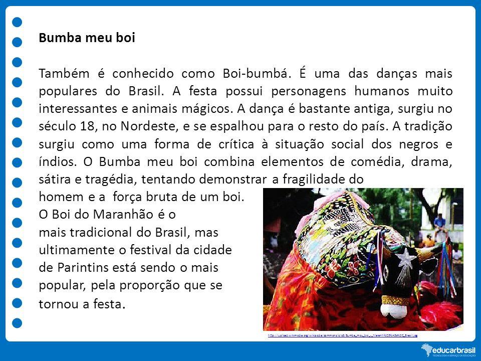 homem e a força bruta de um boi. O Boi do Maranhão é o