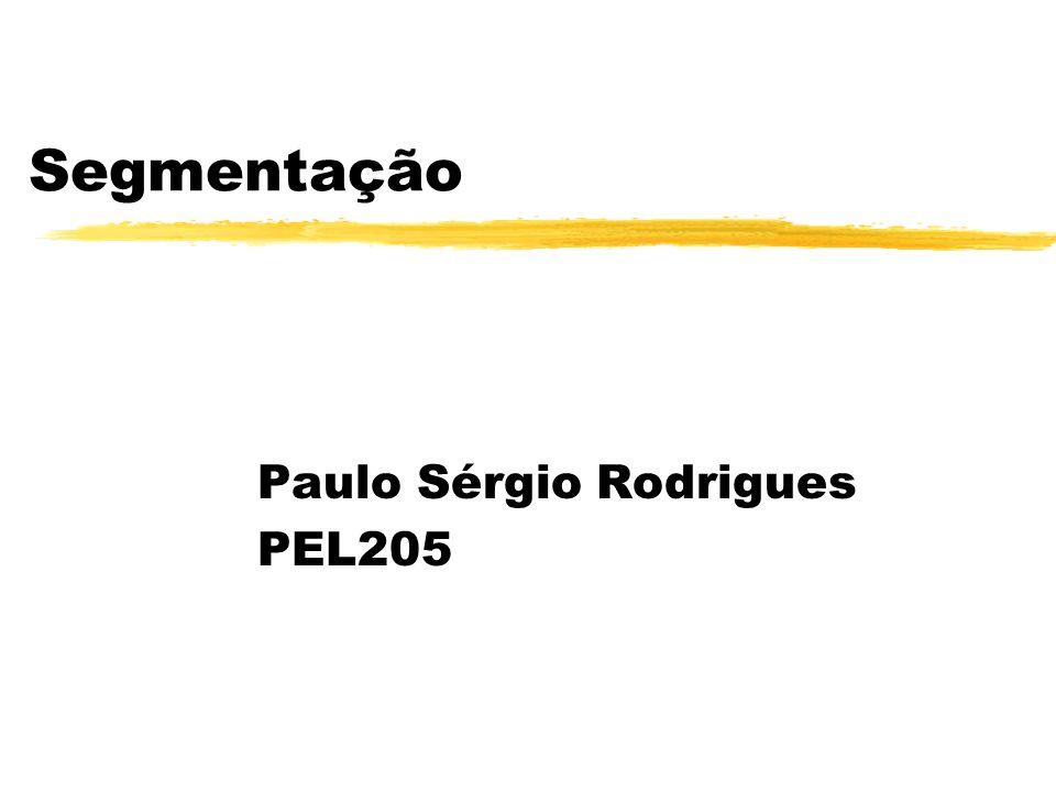 Paulo Sérgio Rodrigues PEL205