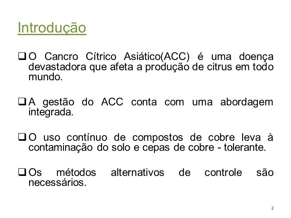 Introdução O Cancro Cítrico Asiático(ACC) é uma doença devastadora que afeta a produção de citrus em todo mundo.