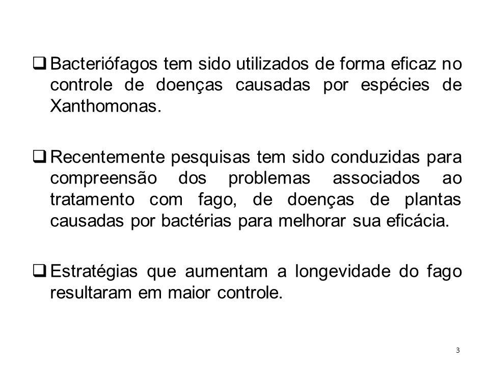 Bacteriófagos tem sido utilizados de forma eficaz no controle de doenças causadas por espécies de Xanthomonas.