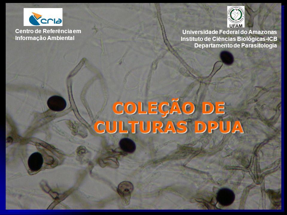 COLEÇÃO DE CULTURAS DPUA