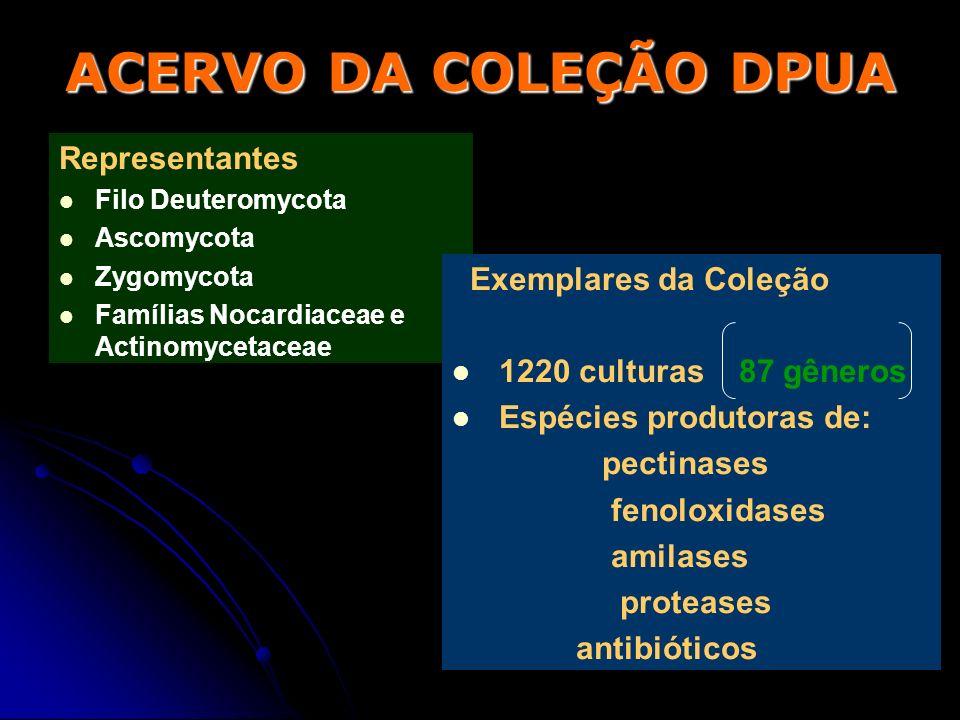 ACERVO DA COLEÇÃO DPUA Representantes Exemplares da Coleção