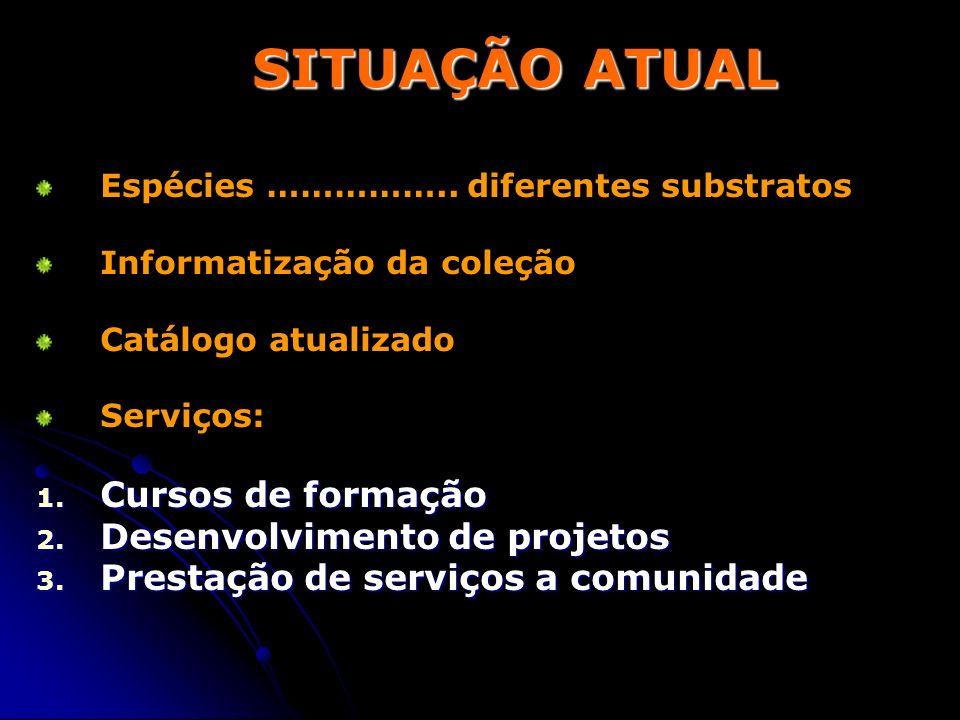 SITUAÇÃO ATUAL Cursos de formação Desenvolvimento de projetos
