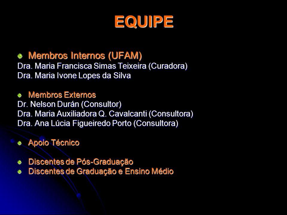 EQUIPE Membros Internos (UFAM)