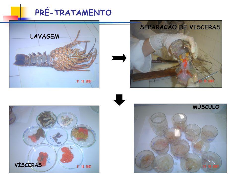 PRÉ-TRATAMENTO SEPARAÇÃO DE VISCERAS LAVAGEM MÚSCULO VÍSCERAS