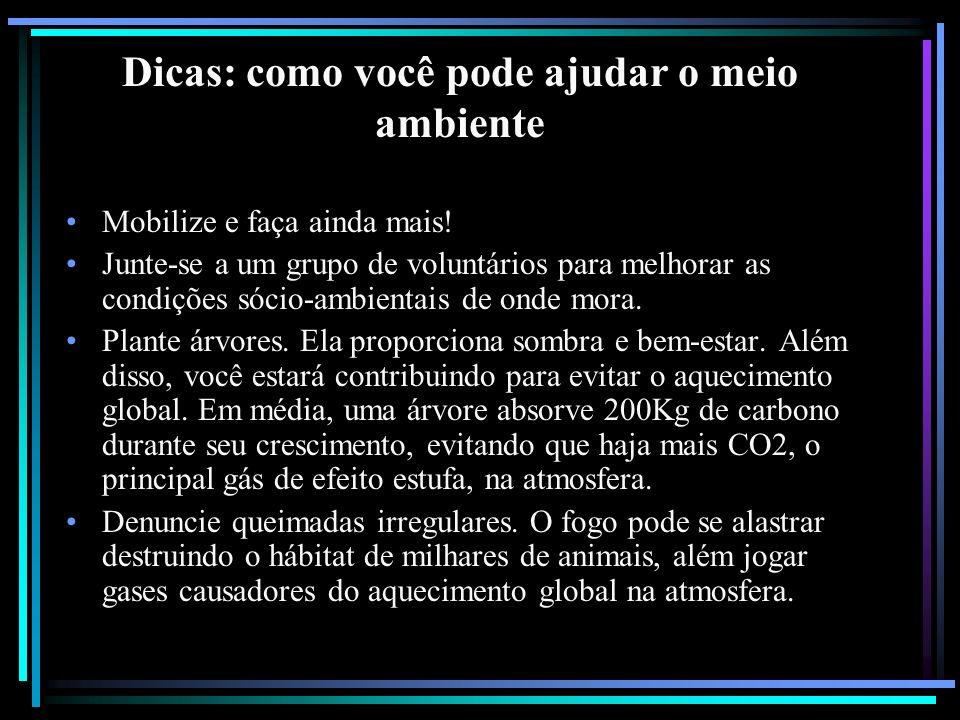 Dicas: como você pode ajudar o meio ambiente