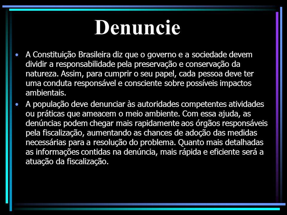 Denuncie