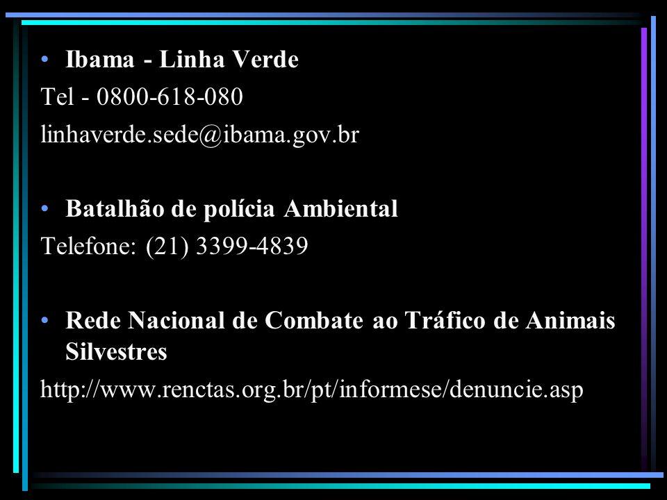 Ibama - Linha Verde Tel - 0800-618-080. linhaverde.sede@ibama.gov.br. Batalhão de polícia Ambiental.