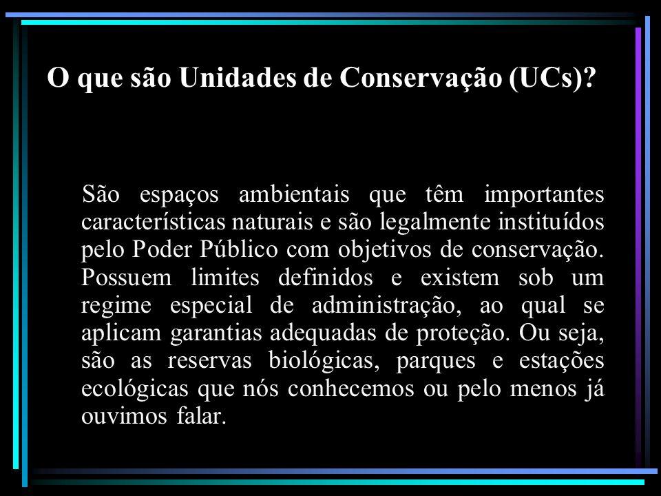 O que são Unidades de Conservação (UCs)