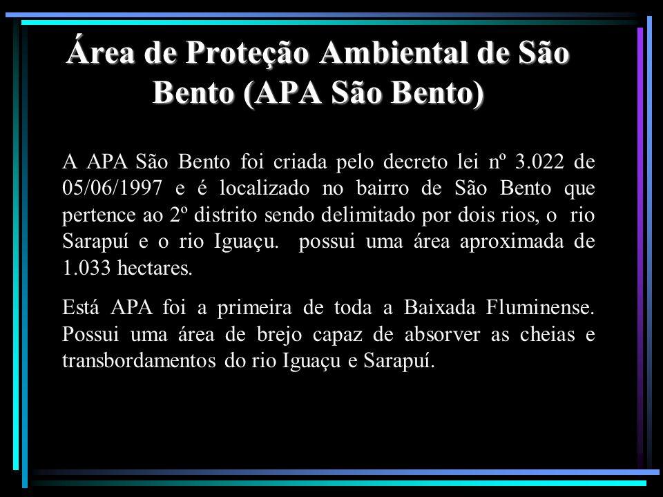 Área de Proteção Ambiental de São Bento (APA São Bento)