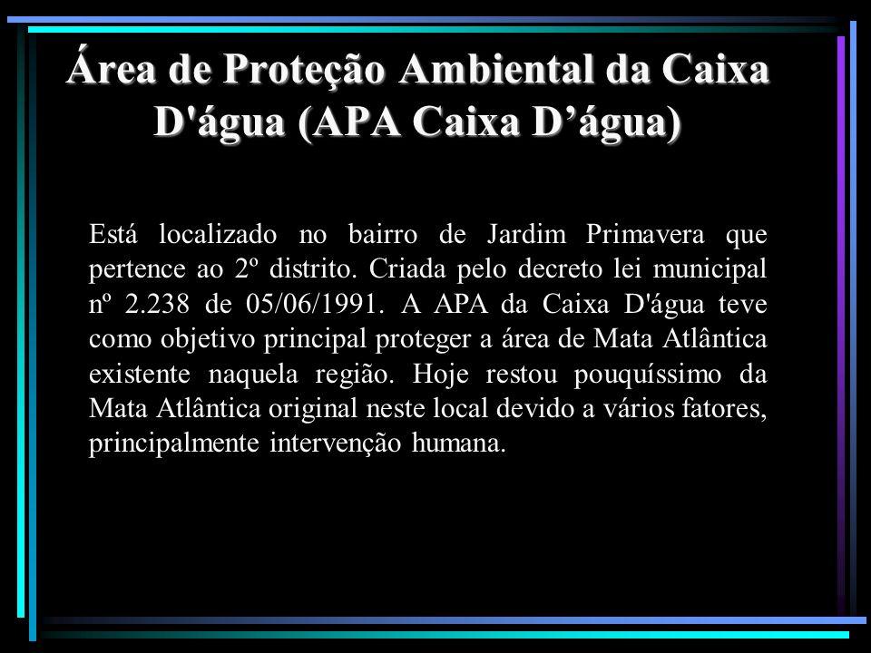 Área de Proteção Ambiental da Caixa D água (APA Caixa D'água)