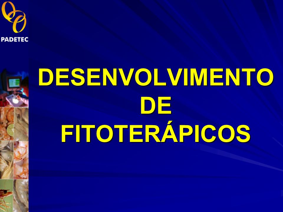 DESENVOLVIMENTO DE FITOTERÁPICOS
