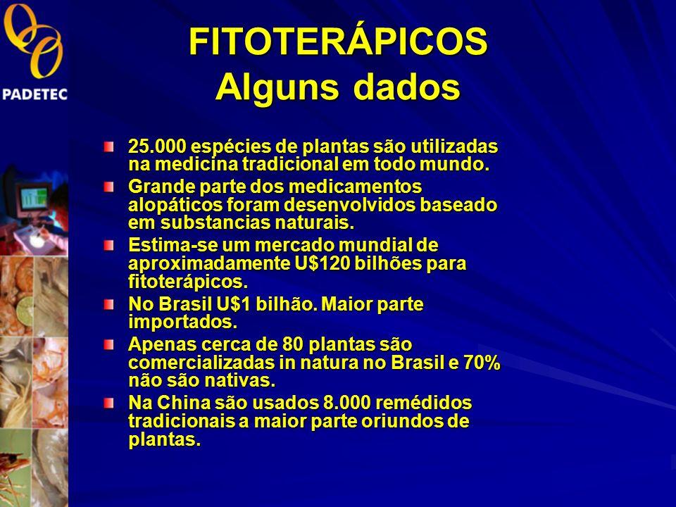 FITOTERÁPICOS Alguns dados