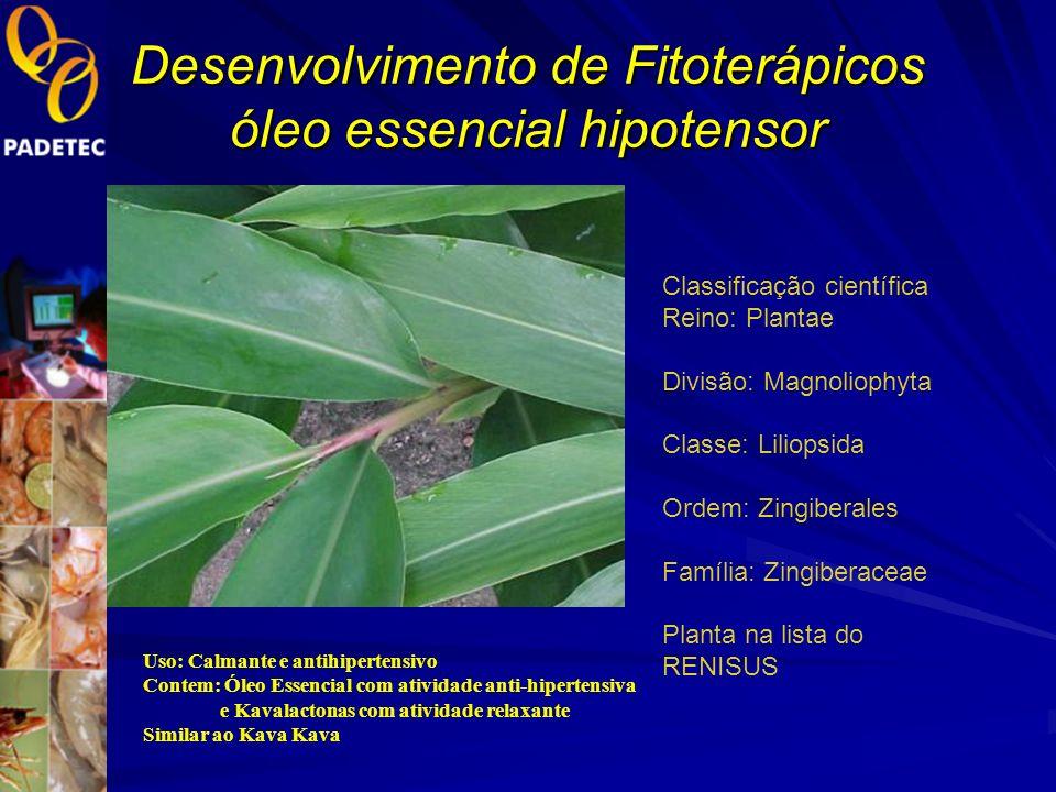 Desenvolvimento de Fitoterápicos óleo essencial hipotensor