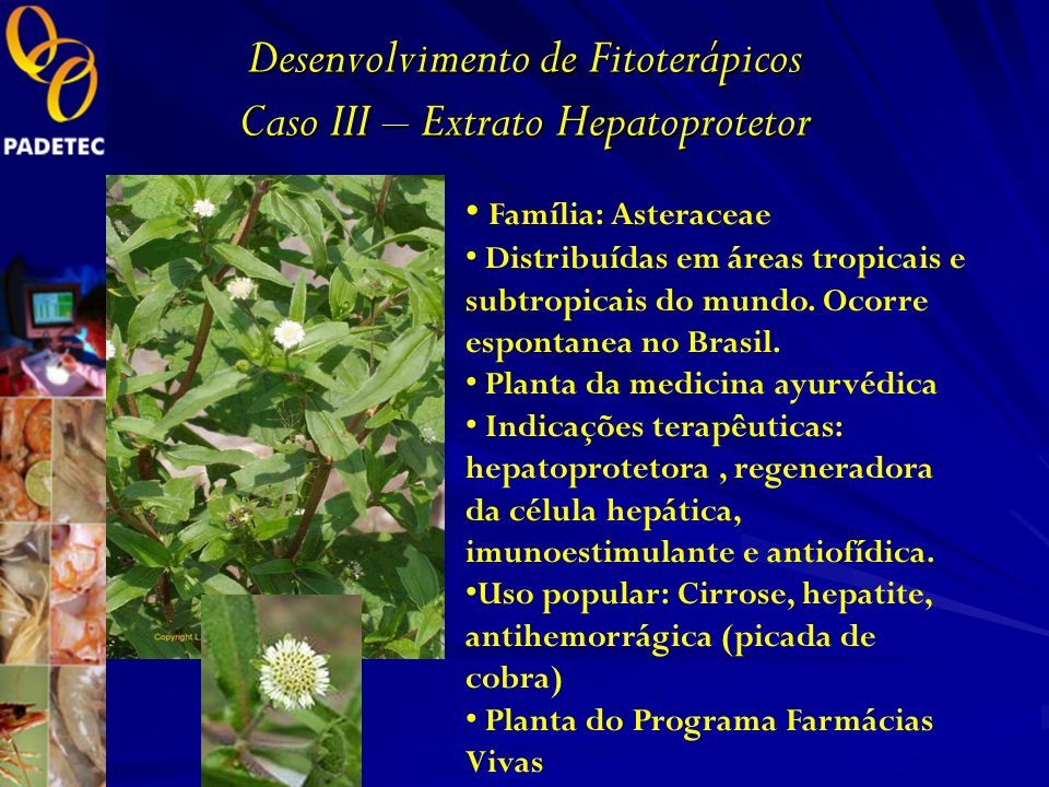 Desenvolvimento de Fitoterápicos Caso III – Extrato Hepatoprotetor