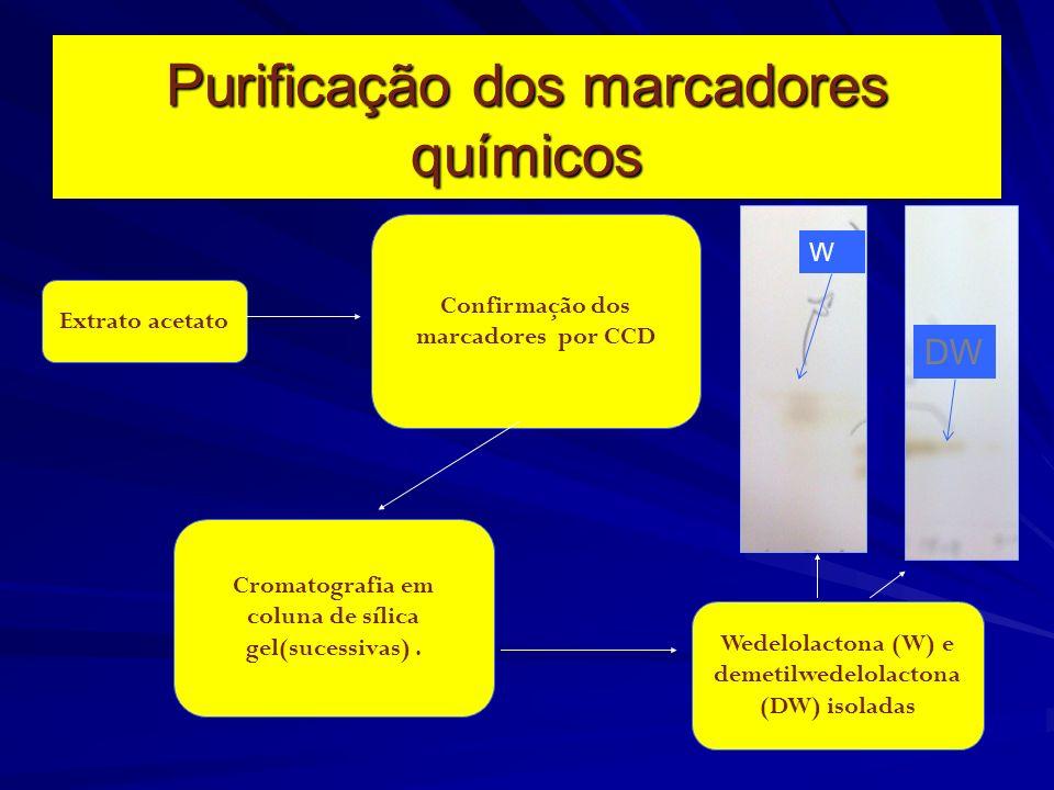 Purificação dos marcadores químicos