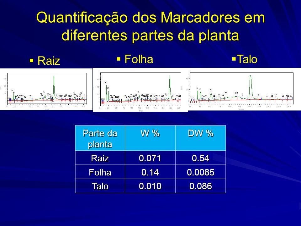 Quantificação dos Marcadores em diferentes partes da planta