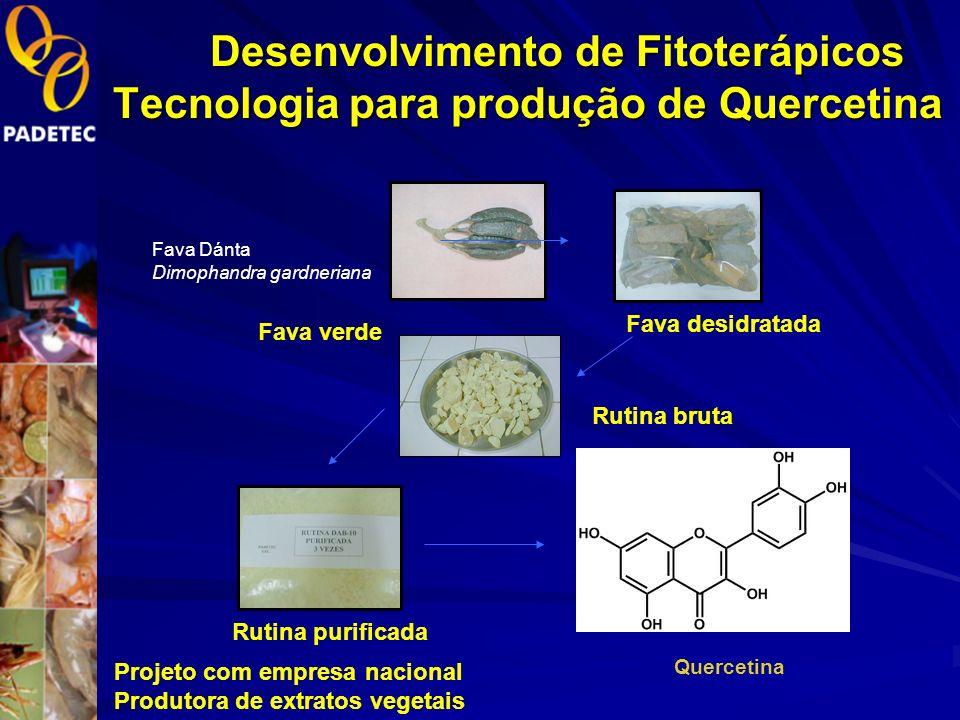 Desenvolvimento de Fitoterápicos Tecnologia para produção de Quercetina
