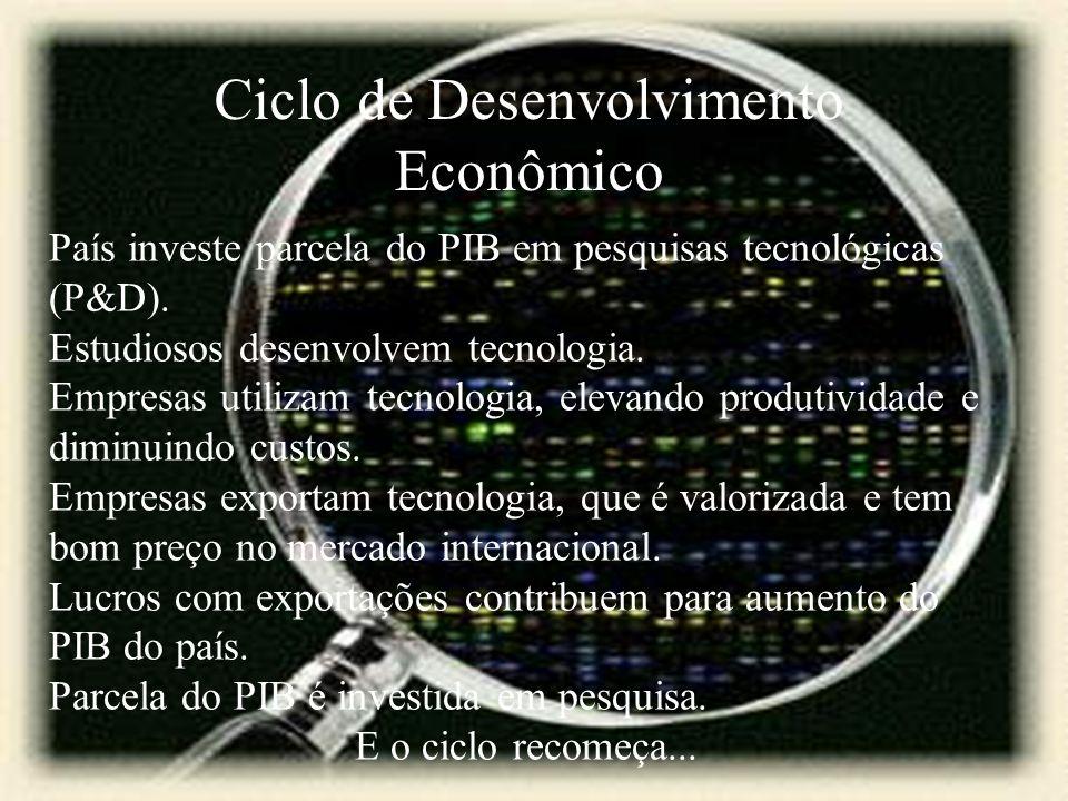 Ciclo de Desenvolvimento Econômico