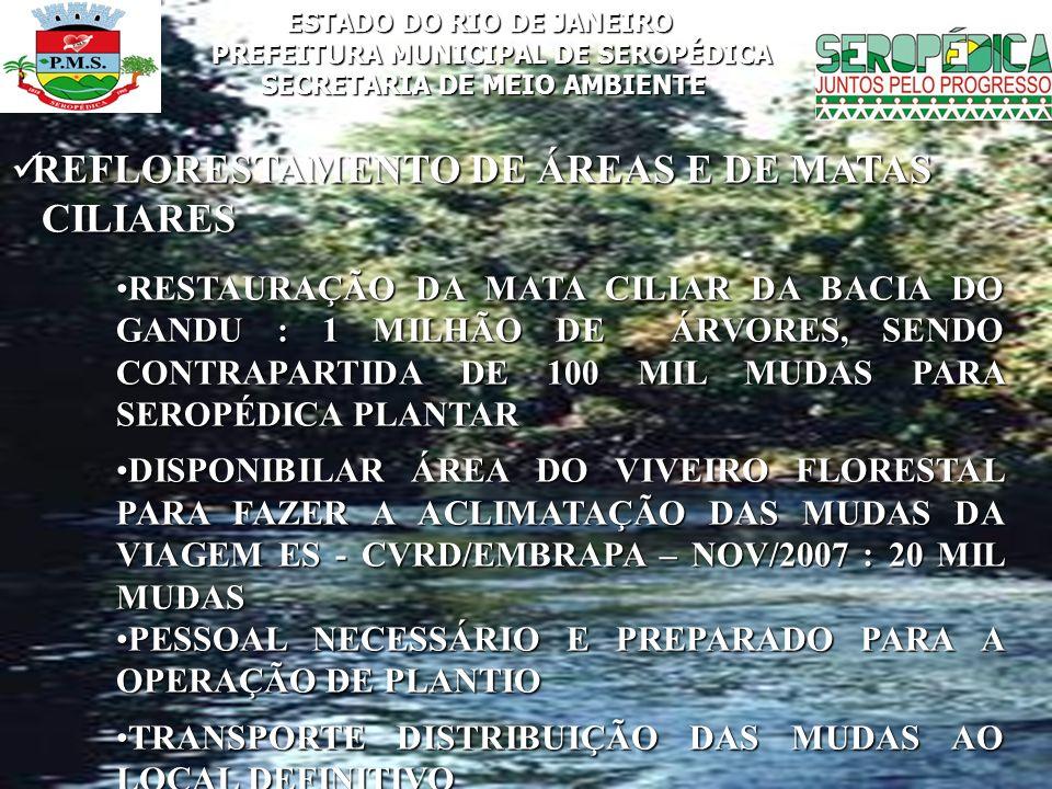 REFLORESTAMENTO DE ÁREAS E DE MATAS CILIARES