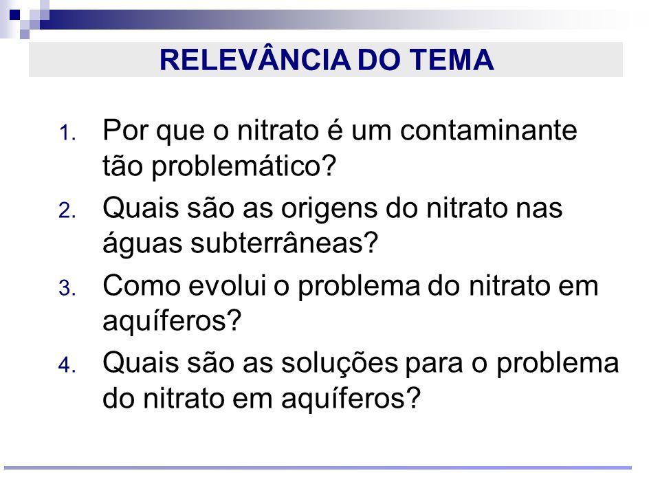 RELEVÂNCIA DO TEMA Por que o nitrato é um contaminante tão problemático Quais são as origens do nitrato nas águas subterrâneas