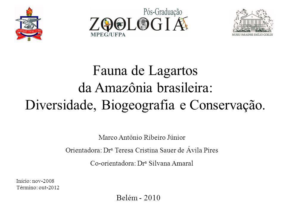 Fauna de Lagartos da Amazônia brasileira: Diversidade, Biogeografia e Conservação.