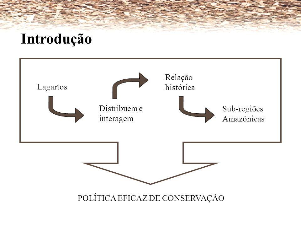 Introdução Relação histórica ' Lagartos Distribuem e interagem