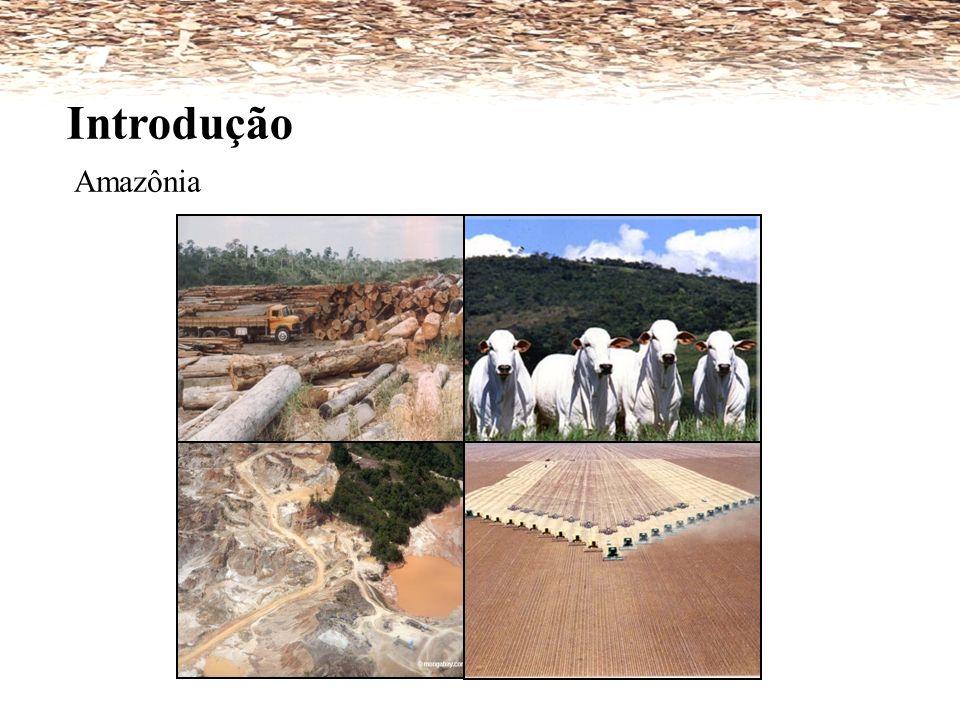 Introdução Amazônia