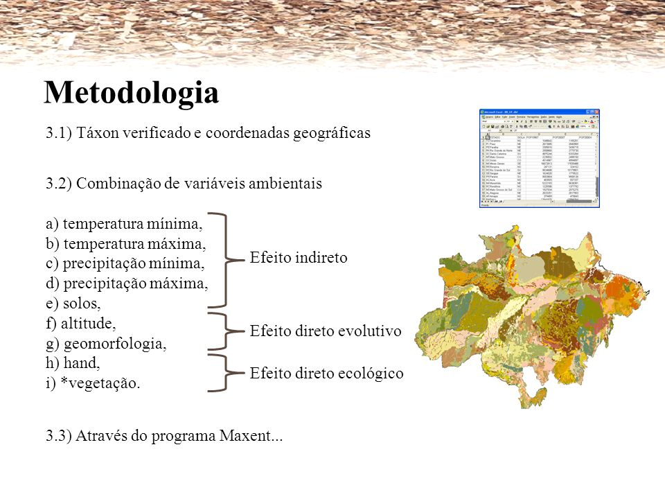 Metodologia 3.1) Táxon verificado e coordenadas geográficas