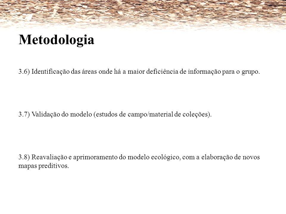 Metodologia 3.6) Identificação das áreas onde há a maior deficiência de informação para o grupo.