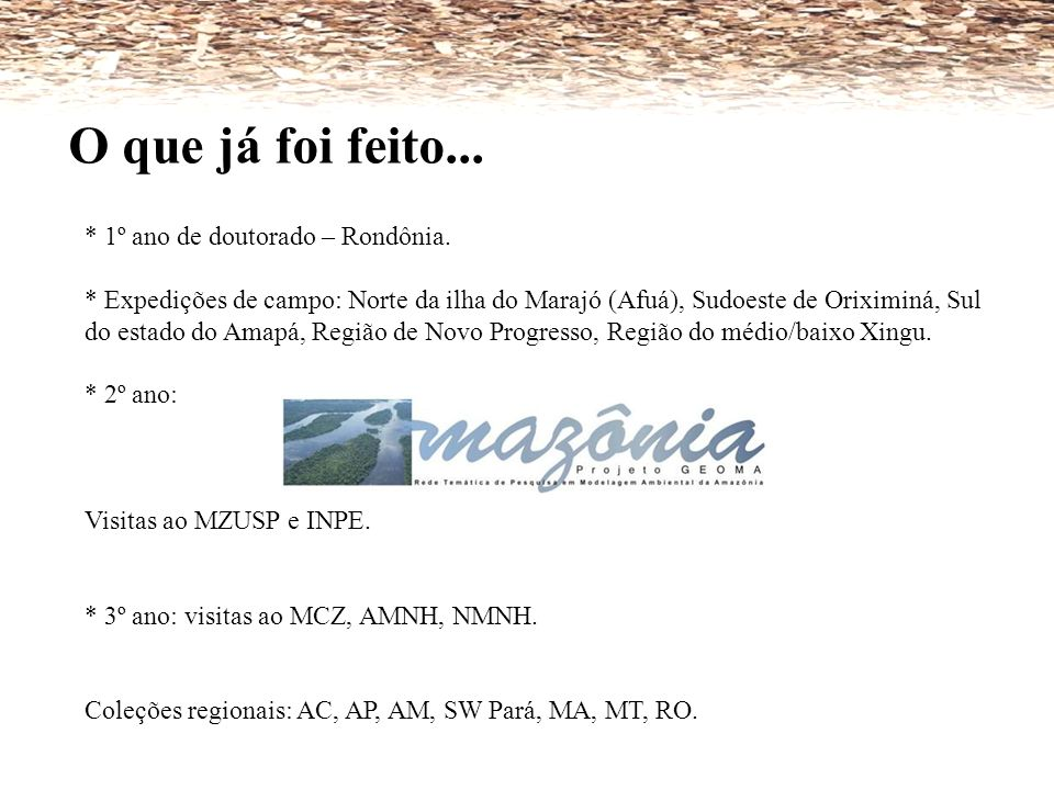 O que já foi feito... * 1º ano de doutorado – Rondônia.