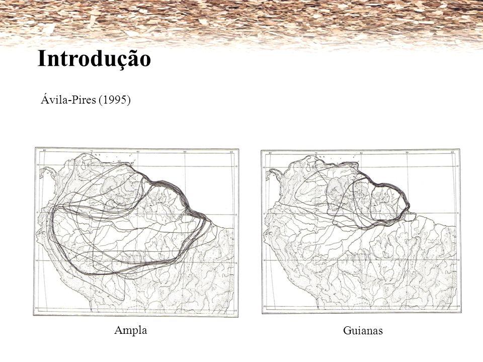 Introdução Ávila-Pires (1995) Ampla Guianas