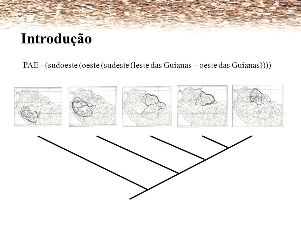 Introdução PAE - (sudoeste (oeste (sudeste (leste das Guianas – oeste das Guianas))))