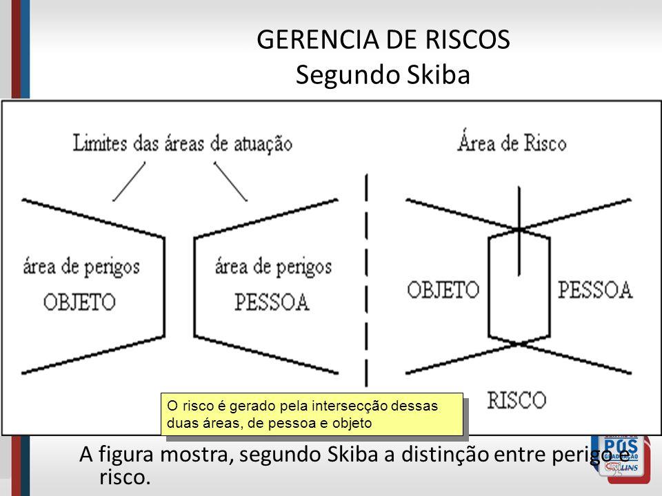 GERENCIA DE RISCOS Segundo Skiba