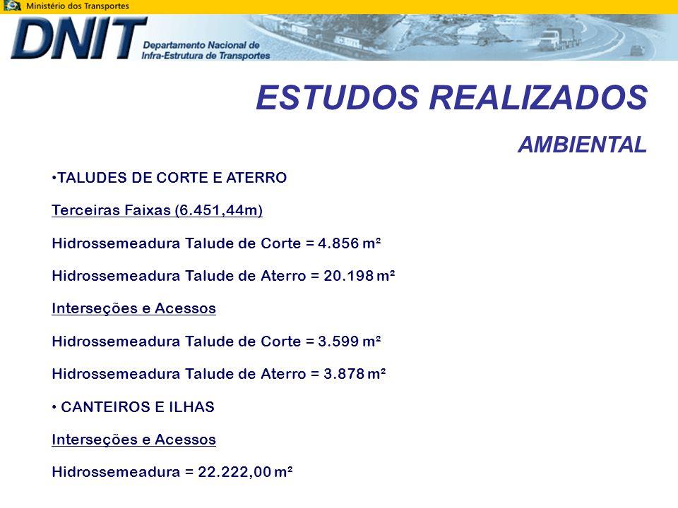 ESTUDOS REALIZADOS AMBIENTAL TALUDES DE CORTE E ATERRO