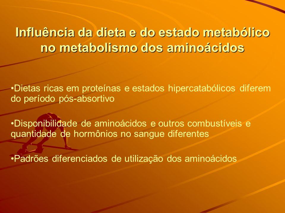 Influência da dieta e do estado metabólico no metabolismo dos aminoácidos