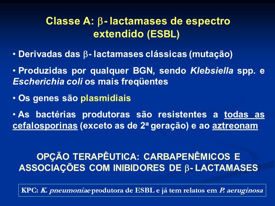 Classe A: - lactamases de espectro extendido (ESBL)