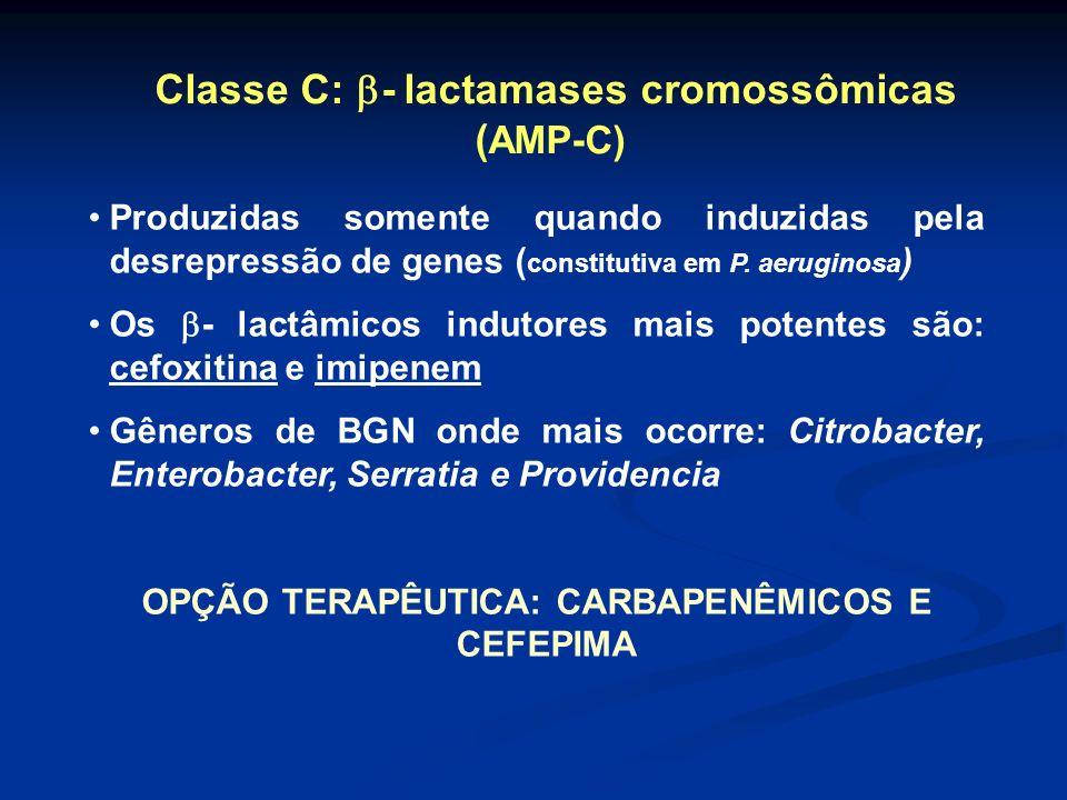 Classe C: - lactamases cromossômicas (AMP-C)